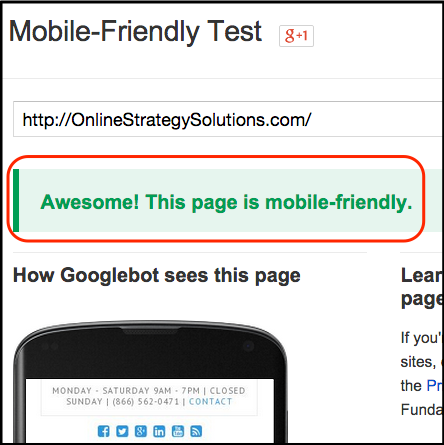 Google Mobile Friendly Success Message